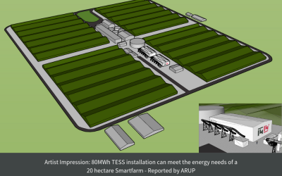 ARUP report highlights benefits of TESS compared to concentrated solar power (CSP) for Smartfarms